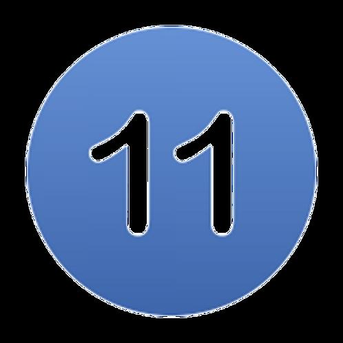 Kieselsäure 11