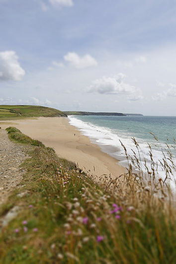 Photograph of Loe Bar beach in Cornwall with lone person on sand in distance and flowers in foreground