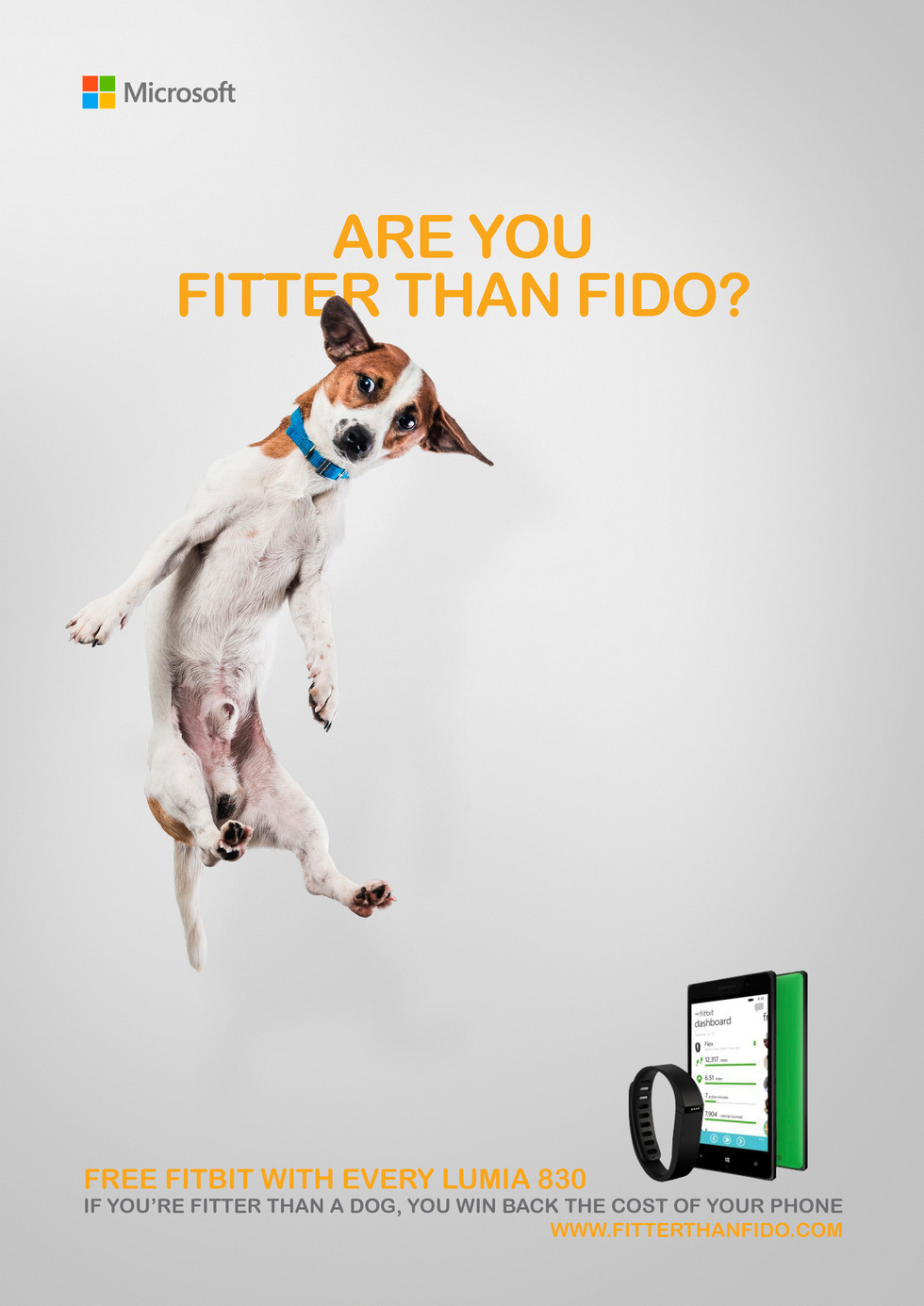 Fitter Than Fido Poster