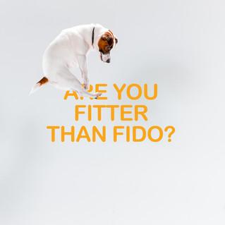 Fitter than Fido