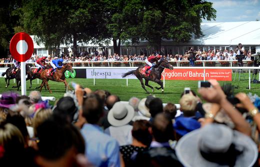 newmarket-races-photographer.JPG