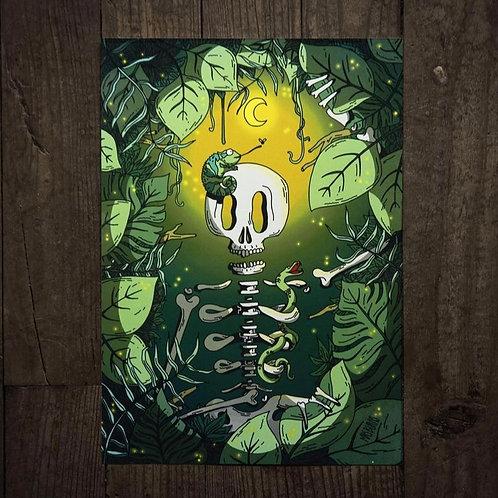 PRINTS - L'EXPLORATEUR (Jungle)