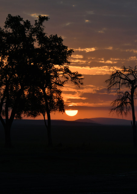 Kenya Massai Mara 2017