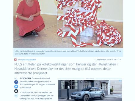 Nesodden Kunstnere som initiativtager og produsent for utstilling på Kunsthallen i Nesoddparken.
