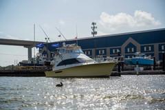 BoatParade_Web-32.jpg