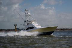 BoatParade_Web-61.jpg