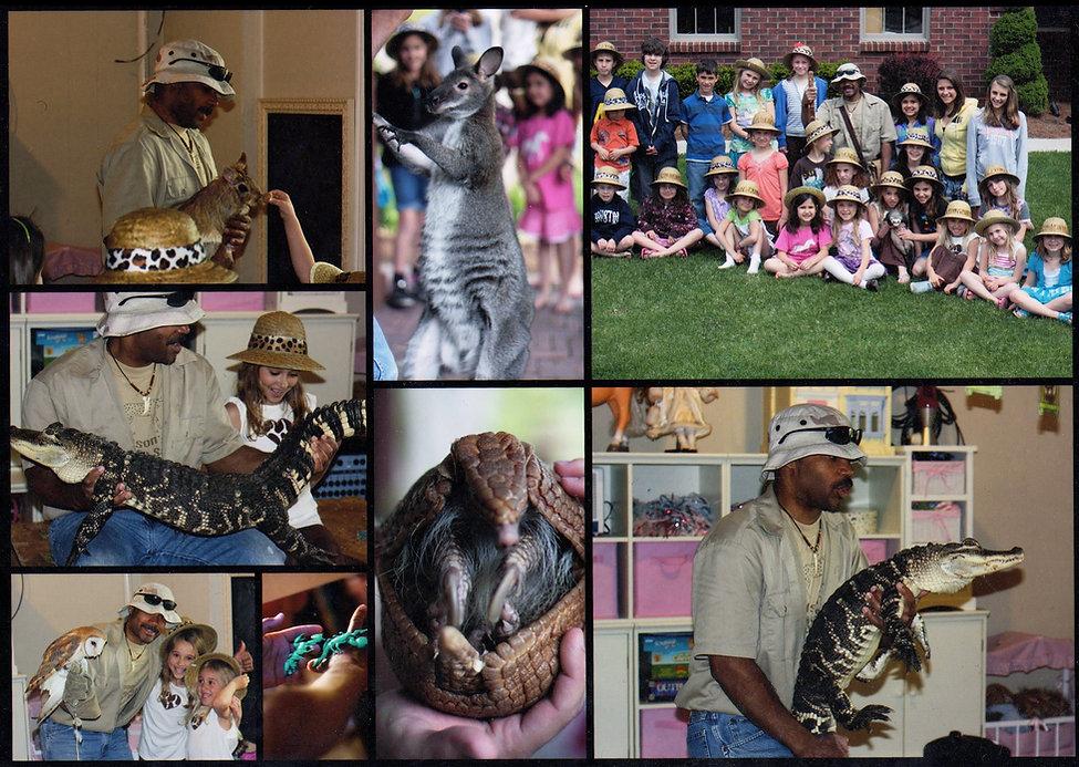 Nelson's Wildlife Safari- Exotic animals at birthday party