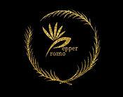 pepper%20promo%20logo%20blk%20bkground%2