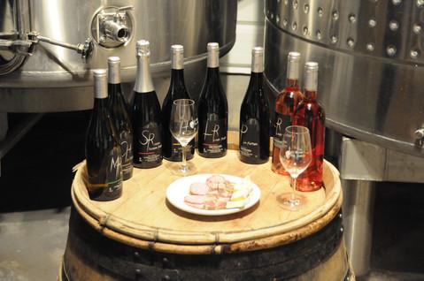 Le Retour aux sources: jeune domaine viticole à l'avenir promettant