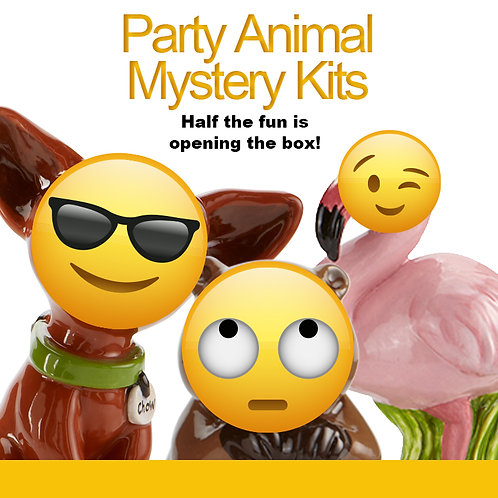 Party Animal Mystery Box