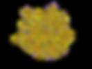 PDB_1c2w_EBI.png