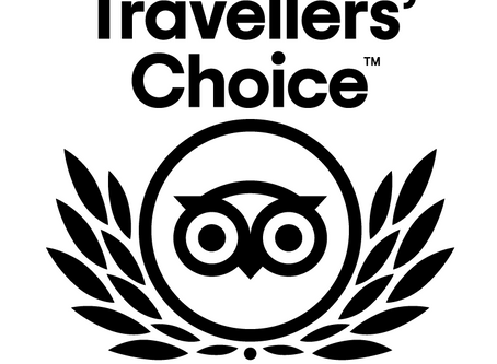 Bath Insider Tours wins Tripadvisor 2020 Travellers' Choice Award