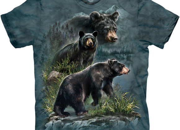 The Mountain- Three Black Bears