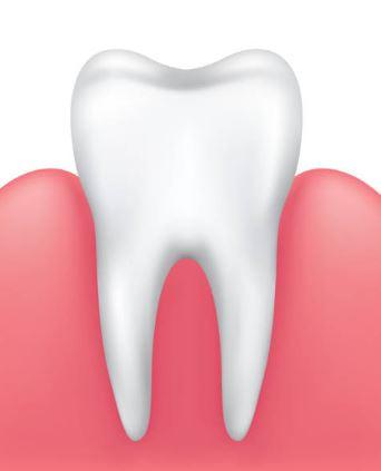 GUMS 101: Gum Swelling