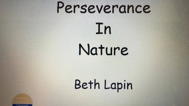 Perseverance in Nature