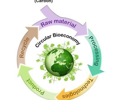 The bio-economy – agriculture, renewables, and mainstream adoption.