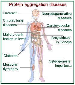 Diseases.png