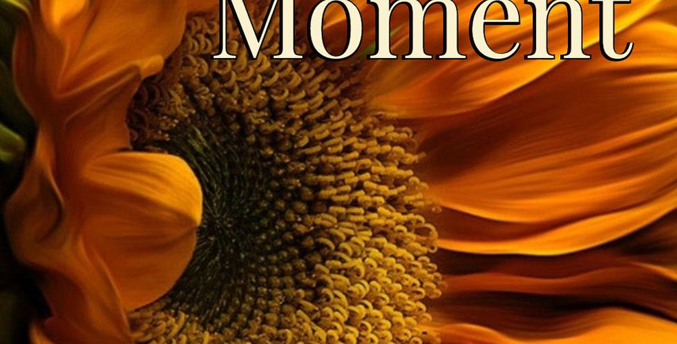 Immortal Moment - The Yorkton Series - Book #2 - eBook