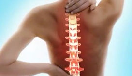 Spinal Touch Therapy