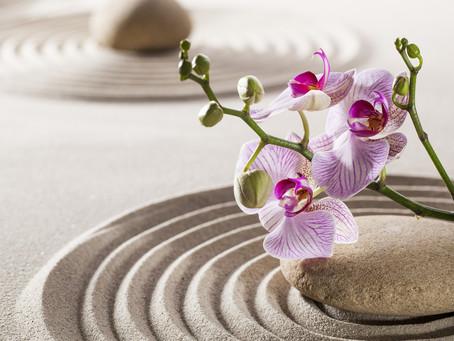 Embracing Inner Wisdom