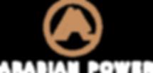 AP Logo_1.png