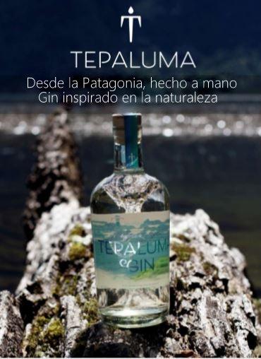 Tapaluma Gin artesanal de la Patagonia de Chile