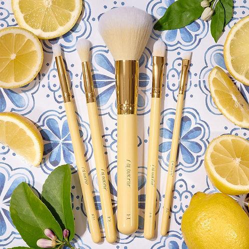 Set de brochas lemon rush