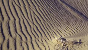 Sillon de Dune