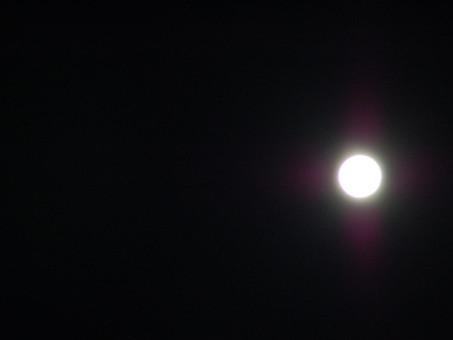 Dame Nouvelle Lune