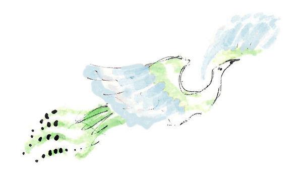 PlumeIllustration.jpg