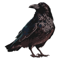 Raven-2.png