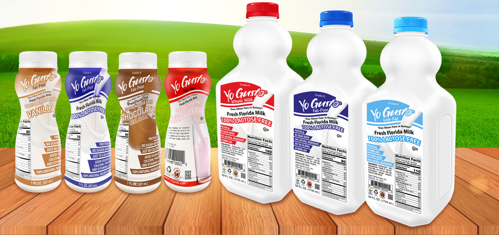 Milk Based Products for consumers