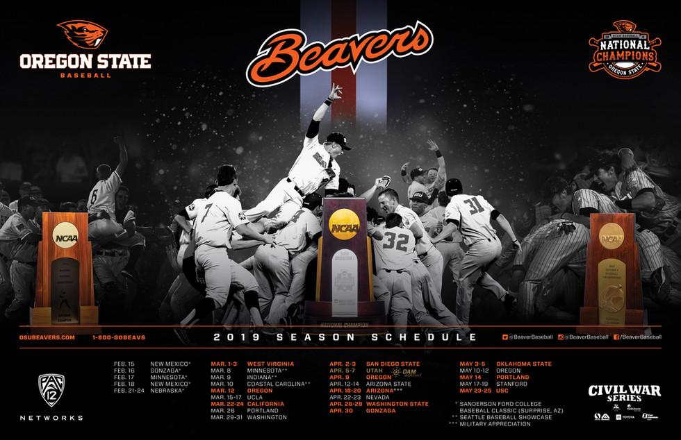 2019 Baseball Season Poster