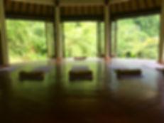 Bali art therpy retreat Anniek Verholt