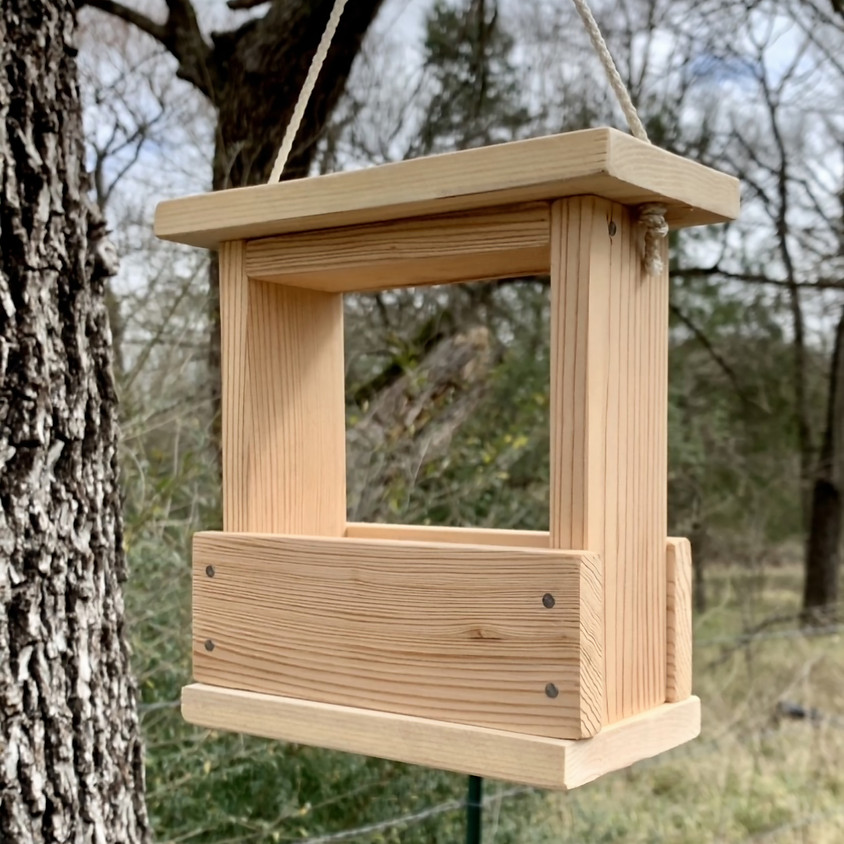 Bird feeder—(ages 5 and up)