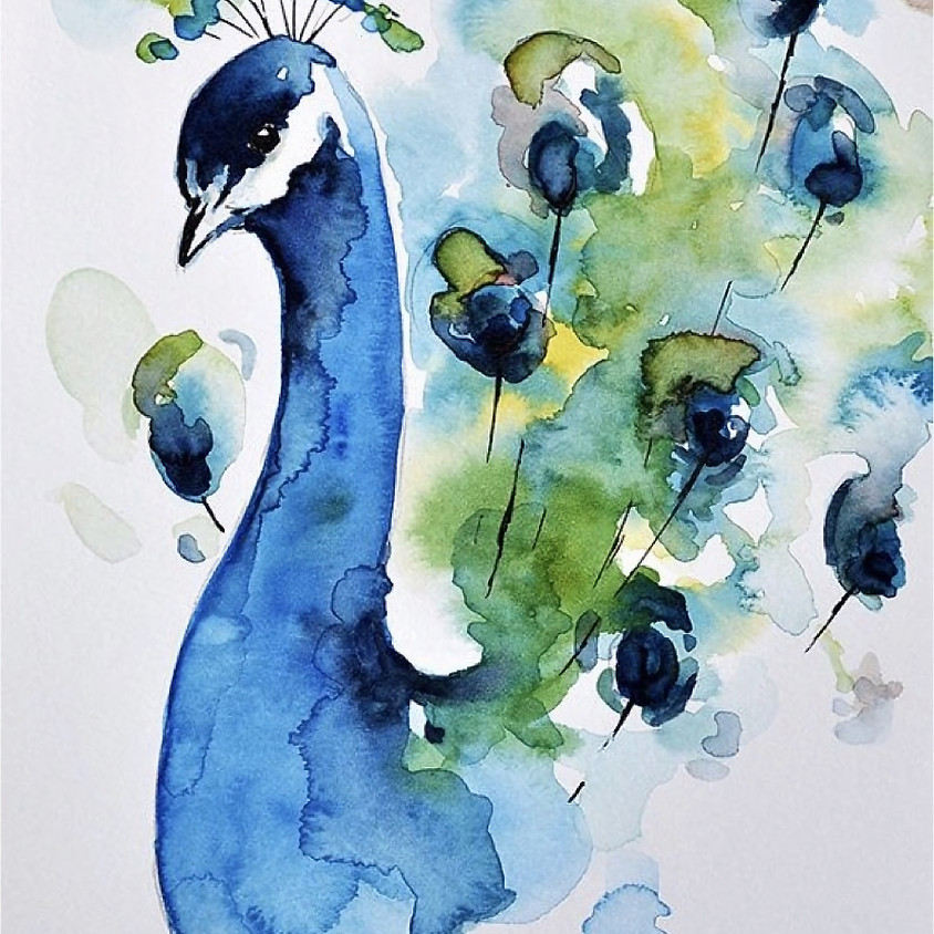 Proud as a Peacock watercolor