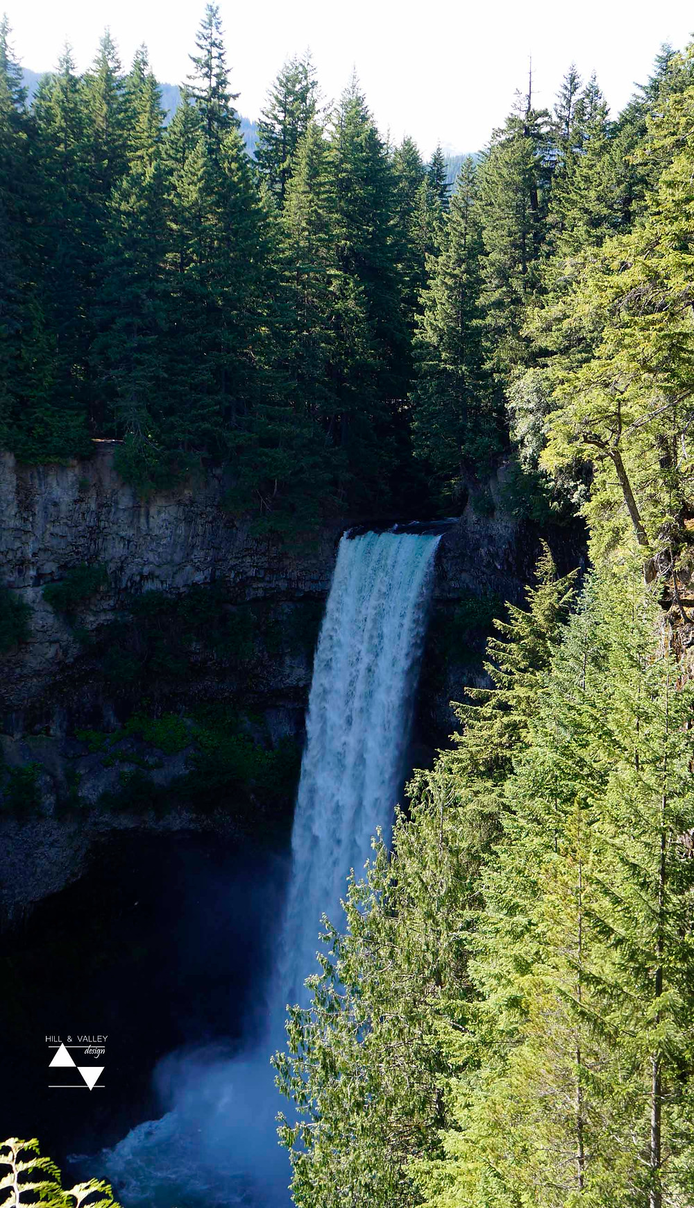 waterfall and trees at Brandywine Falls