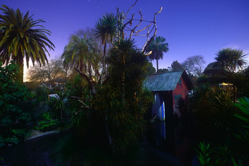 Tamarin Tropics