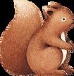 Disegno di scoiattolo