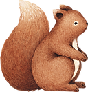 Drawing of Squirrel