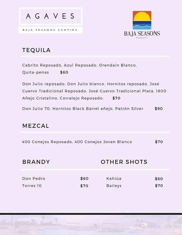 Baja Seasons - Agaves Menu.png