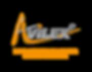 Avilex head-logo.png