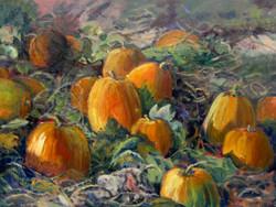 Pumpkin Pic