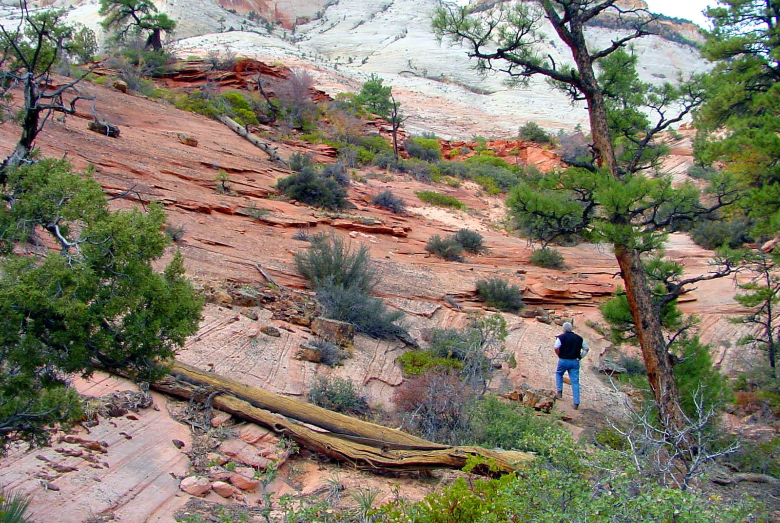 Zion, Les hiking.jpg