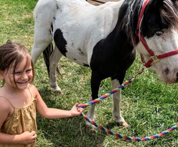 emmie-pony.jpg