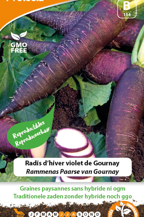 Protecta radis d'hiver violet de Gournay