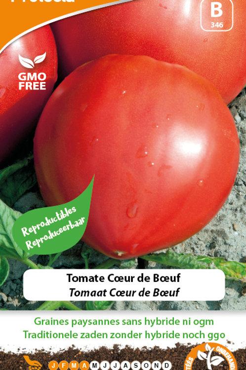 Protecta tomate cœur de boeuf