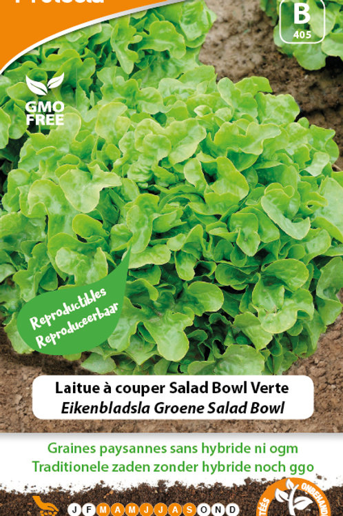 Protecta Laitue à couper Salad Bowl Verte