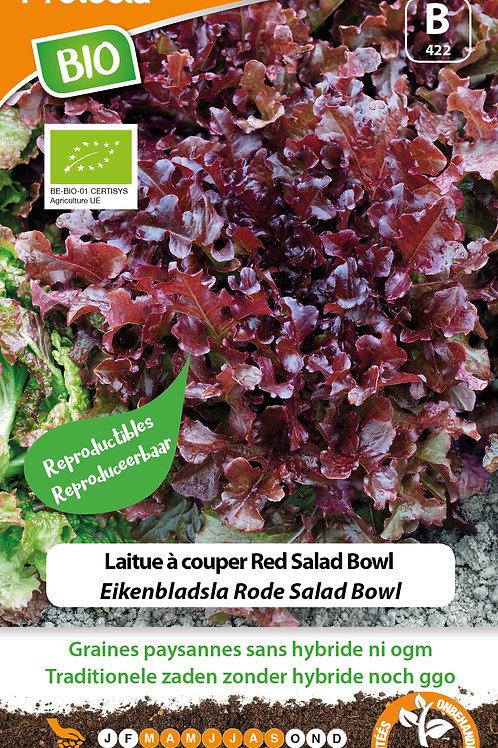 Protecta laitue à cuoper red salad bowl BIO