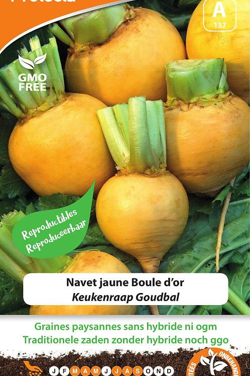 Protecta Navet jaune Boule d'or